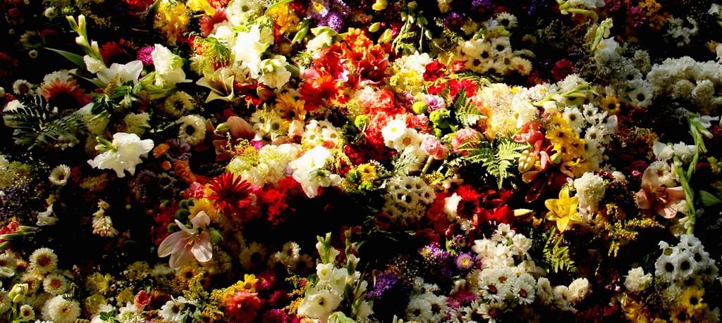 Díselo con flores...