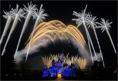 Disneyland firework 2