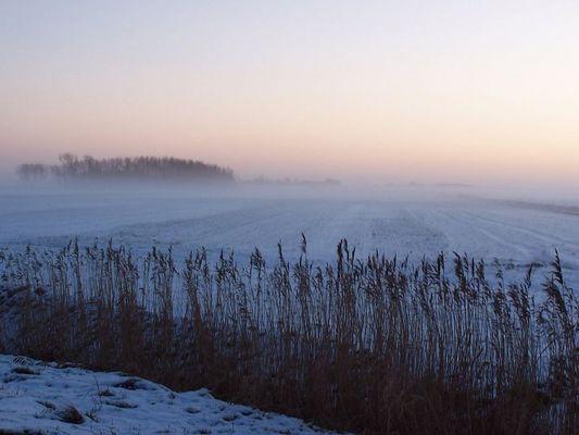 dithmarscher winter