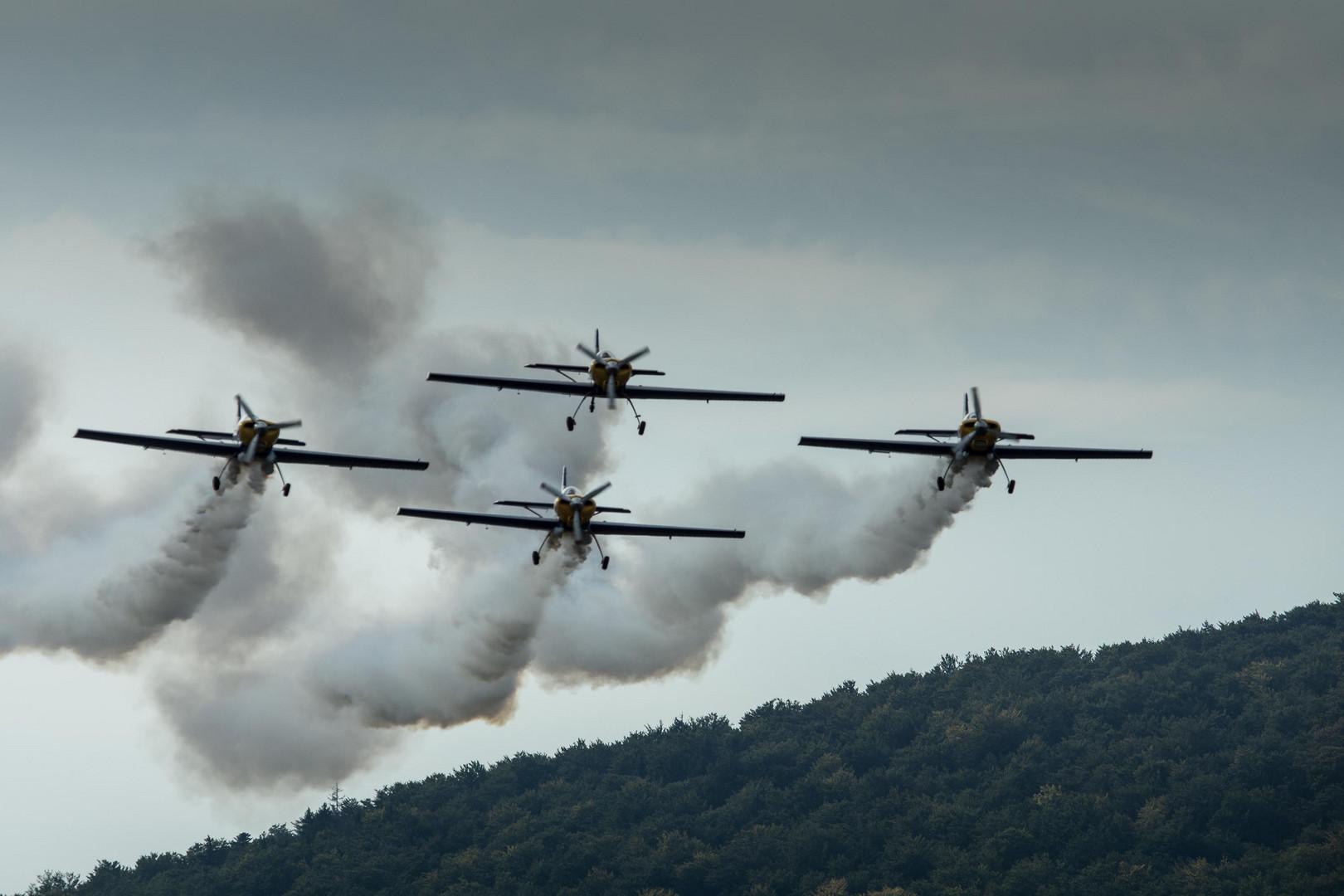 Dittinger Flugtage 2013 / 3