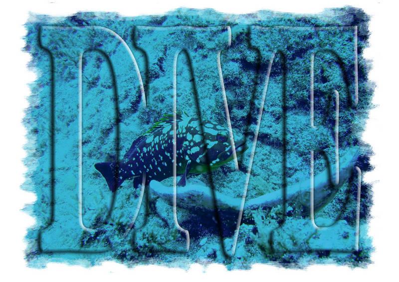 Dive I