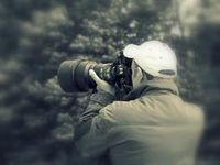 DLD Photo