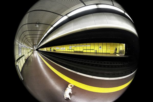 Do not cross the yellow line or the subway monster will swallow you!