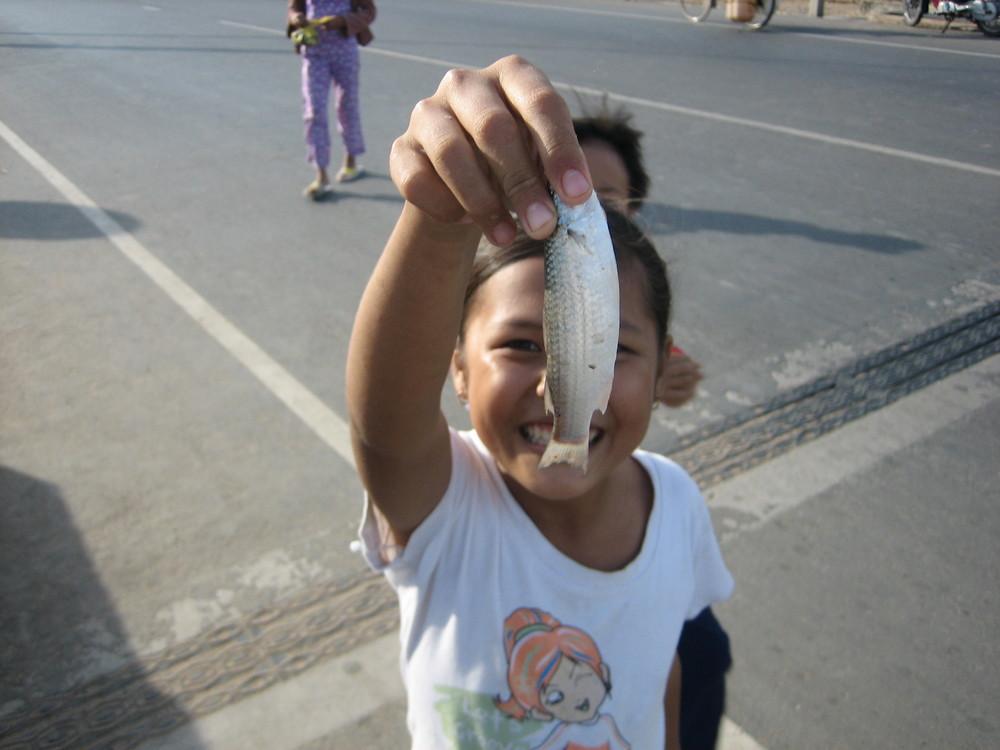 do you like a fish