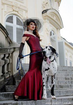 Doggi Style