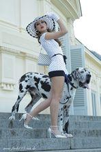 Doggi Style-1