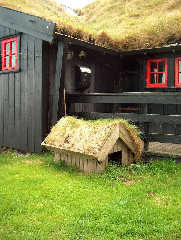Dog's Bed - Isole Faroe