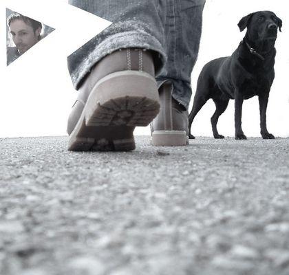 Dog......walk....!