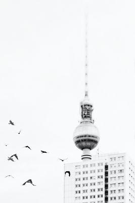 [DoL] - Berlin 3.0