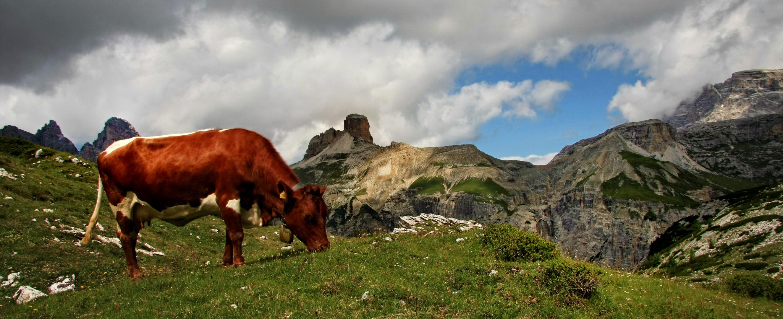 Dolomiten in Süd Tirol