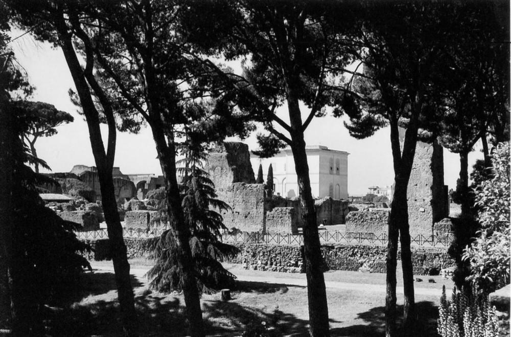 domus augusti