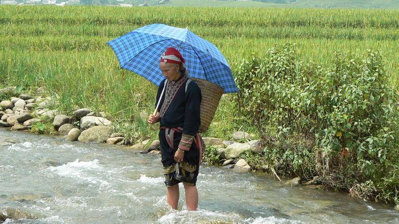 dóna vietnamita