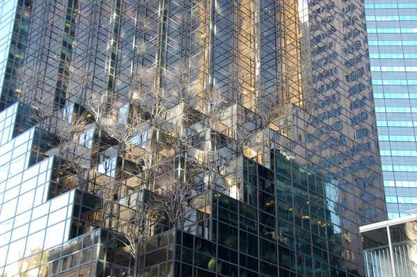 Donald Trump Building, New York