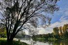 Donau bei Bad Abbach