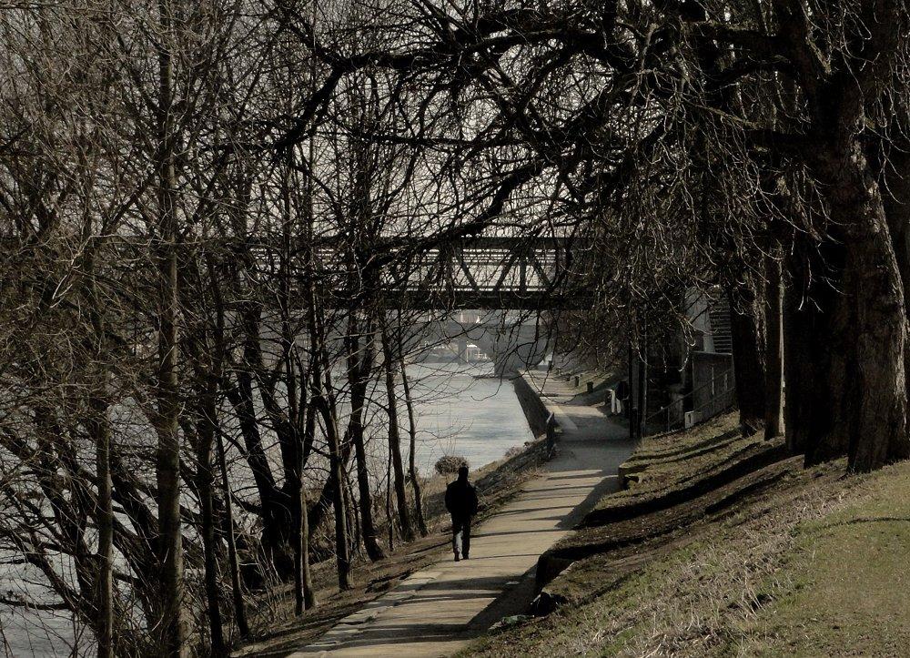 Donau-Side ...