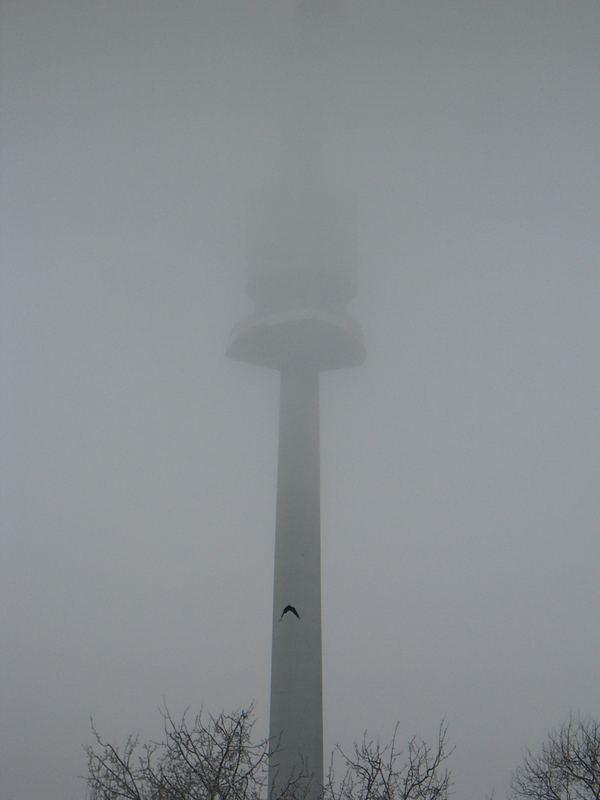 Donauturm im Nebel...