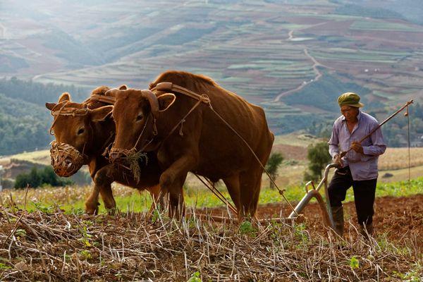 Dongchuan, Yunnan.