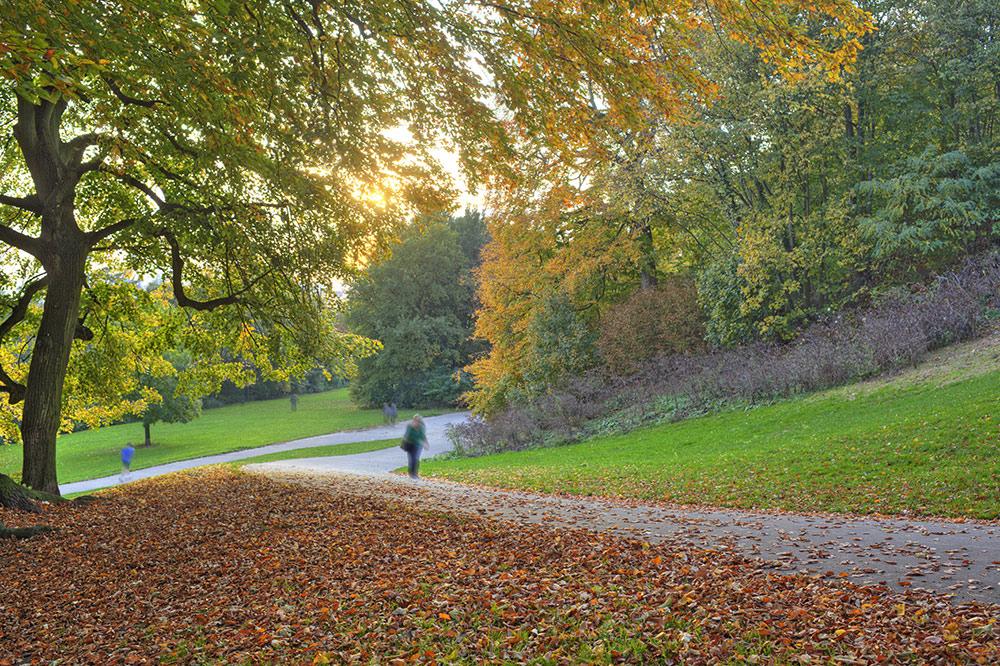 Donners Park Hamburg im Herbst