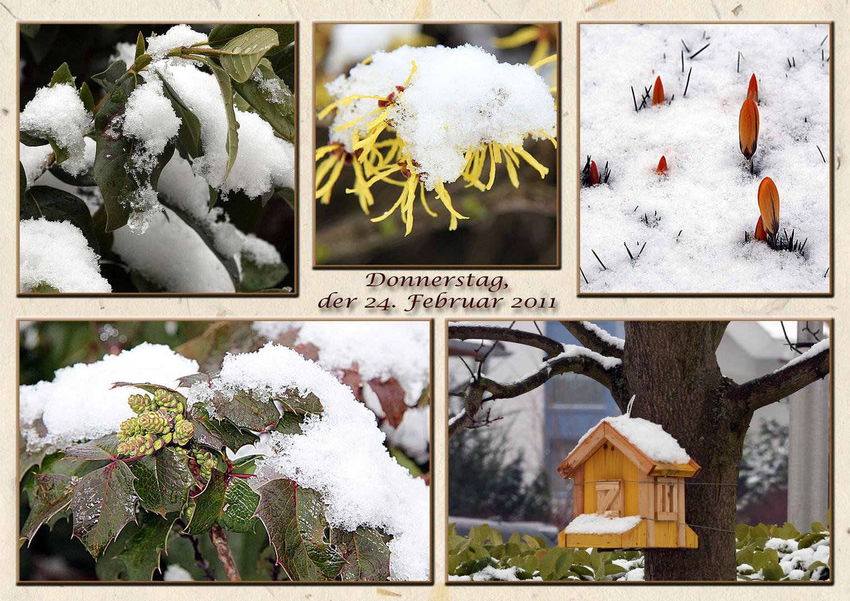 DONNERSTAG, 24. FEBRUAR 2011