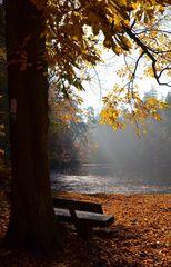 Donoper Teich im Herbst