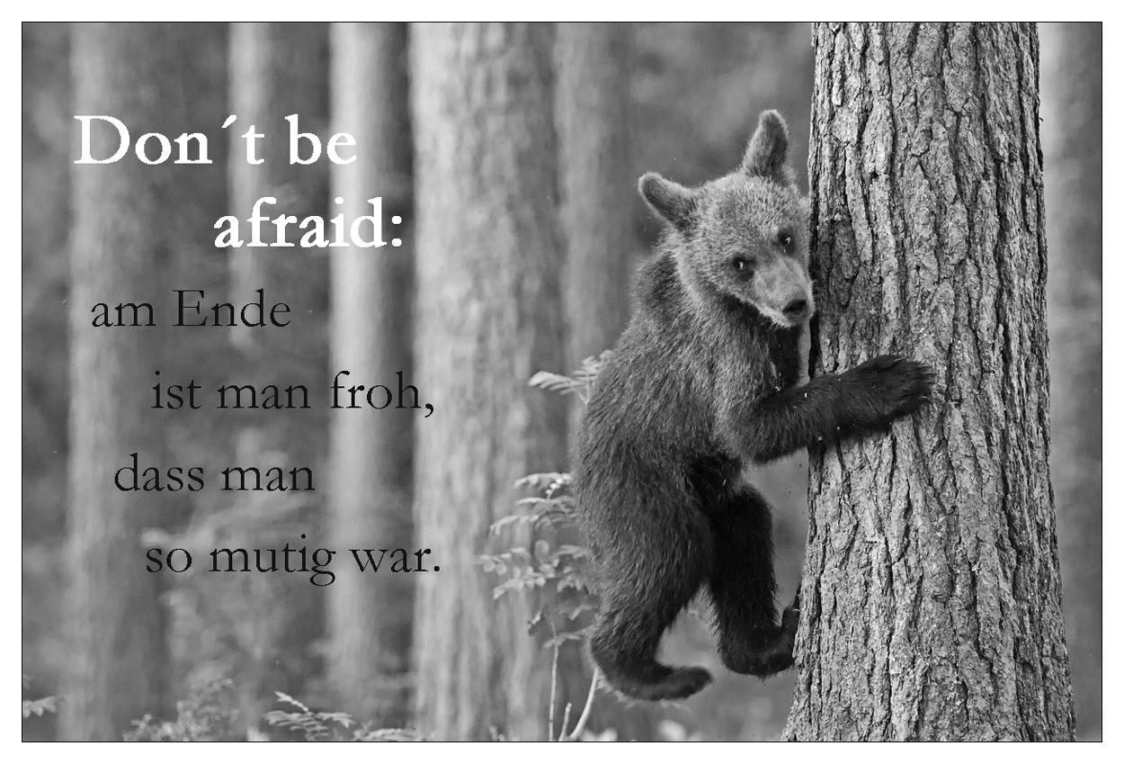 Don´t be afraid
