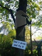 Don´t drink and fly