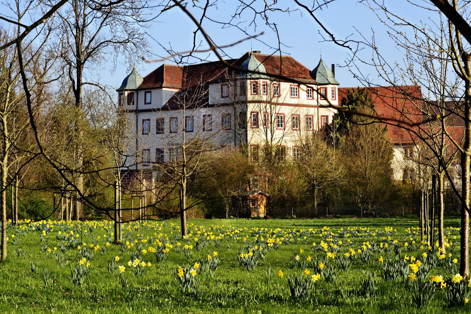 Donzdorfer Schloss....