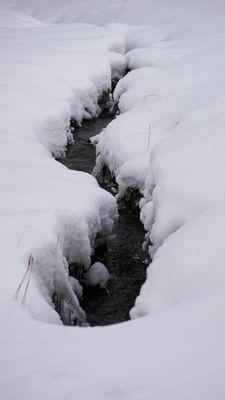 Doost im Winter (13.02.2009) 04