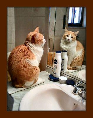 Dopo il bagno aspetto  la creme.