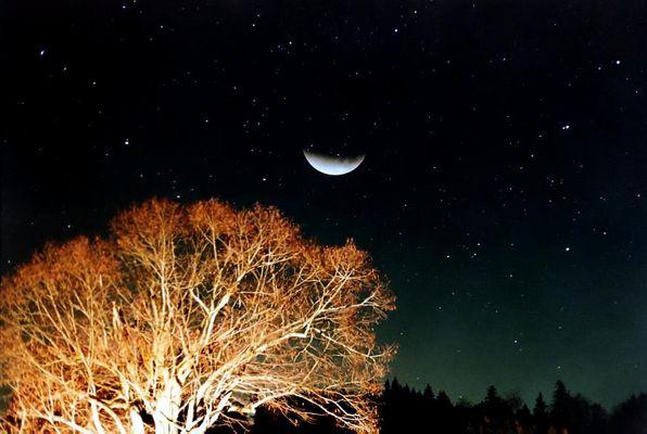 Doppelbelichtung: Mondfinsternis an den Horizont gerückt (2)