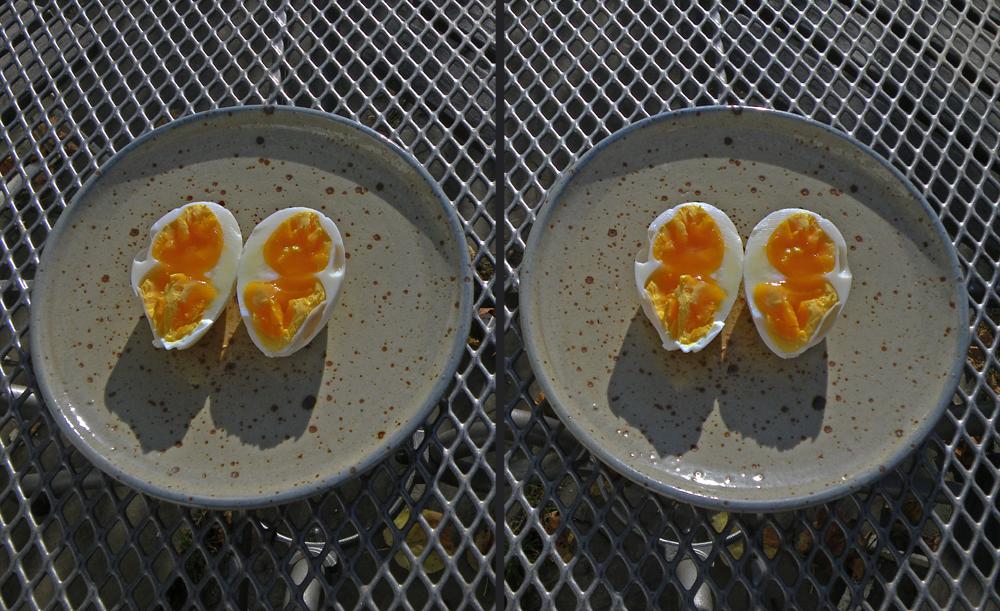 Doppeldotter-Hühnerei, 88 g