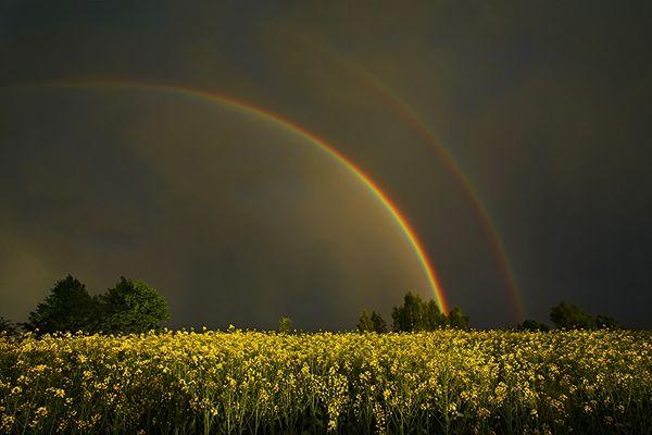 Doppelregenbogen II