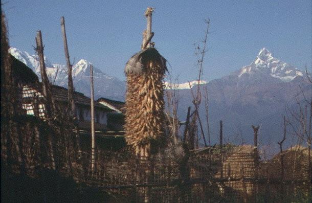 Dorf am Annapurna-Treck gelegen