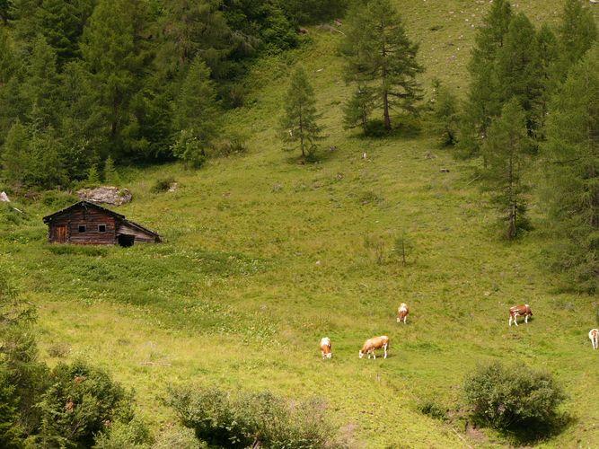 Dorfertal - Osttirol