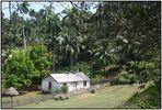 Dorfschule / Escuela rural