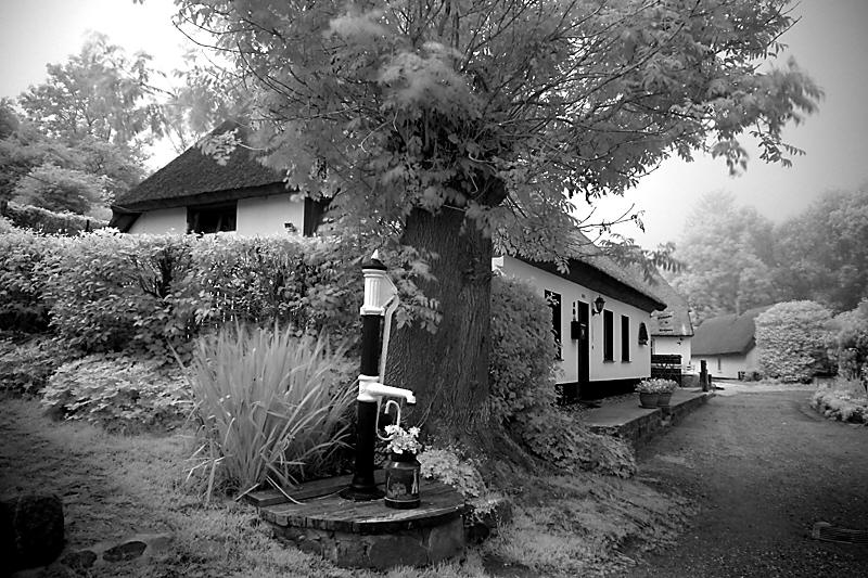 Dorfstrasse in Vitt b. Arkona