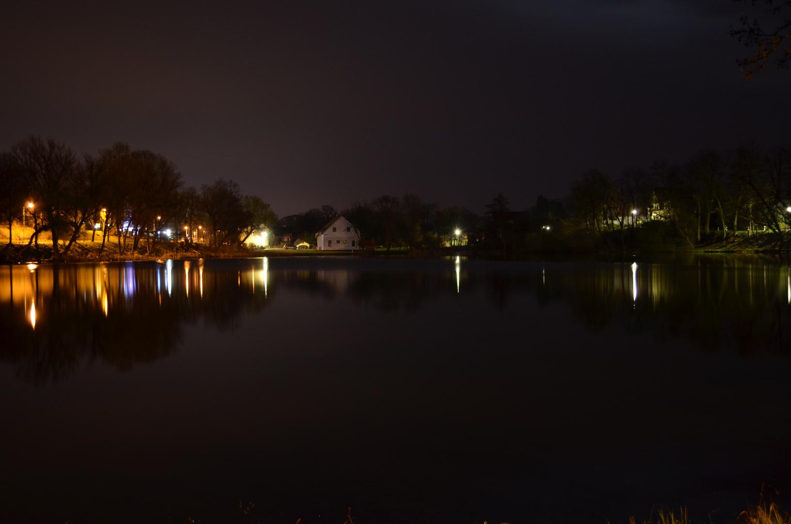 Dorfteich bei Nacht