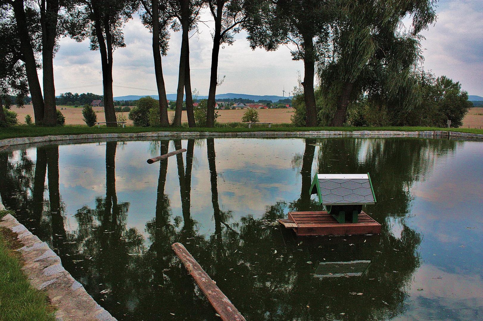 Dorfteich von Dürrwicknitz mit Blick auf Panschwitz-Kuckau