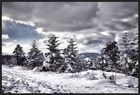 Dornacher Winter