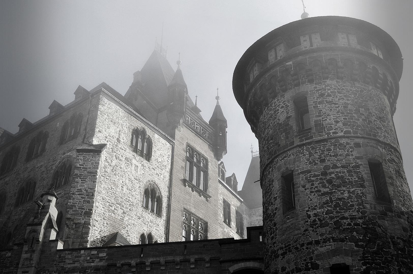 Dornröschen im Nebel