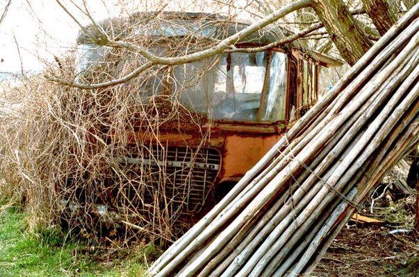 Dornröschenschlaf - Alter Ikarus-Bus 630