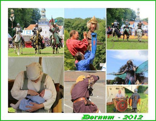 Dornum 2012