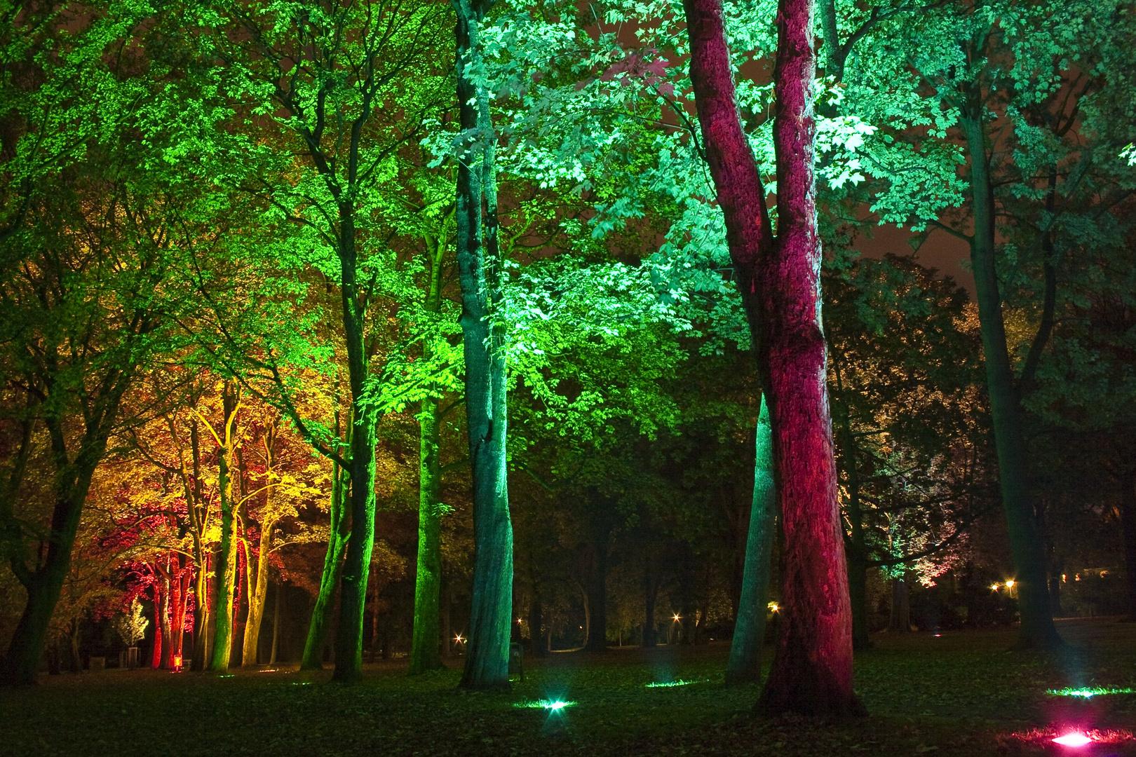 dortmund -- westpark