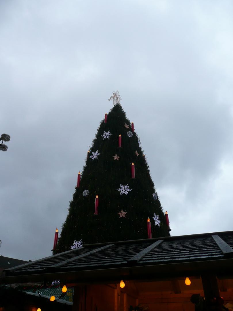 Dortmunds größter Weihnachtsbaum