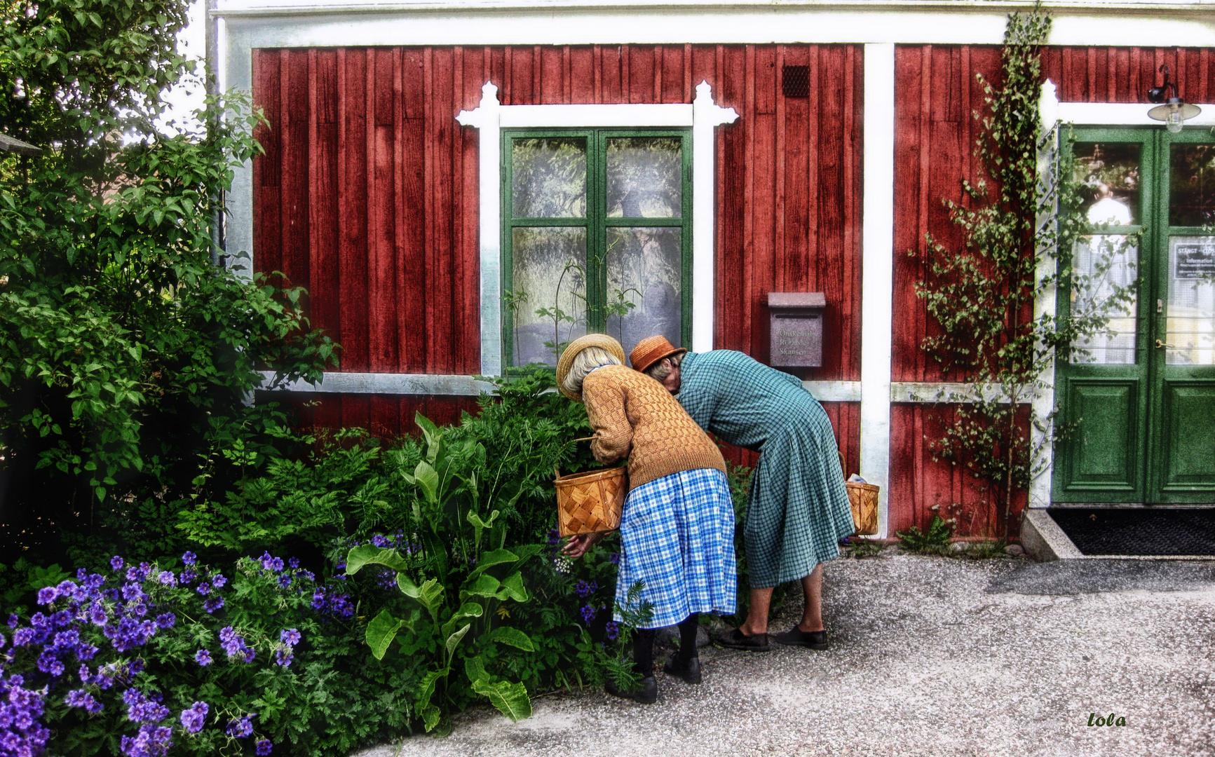 """Dos """"chicas"""" suecas"""