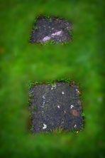 dos pasos de piedra sobre hierba