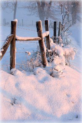 Douceur d'un matin glacial !