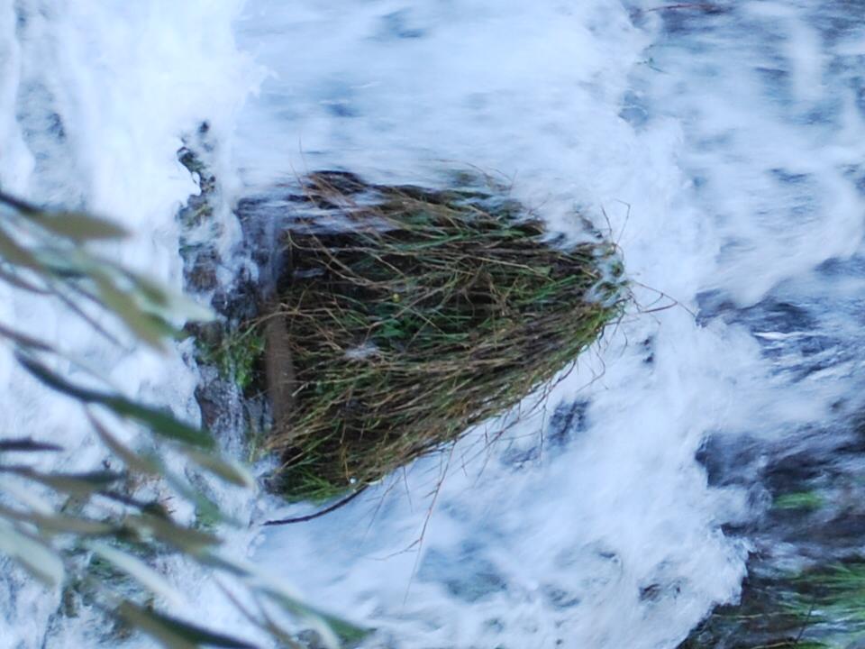 douche des roches