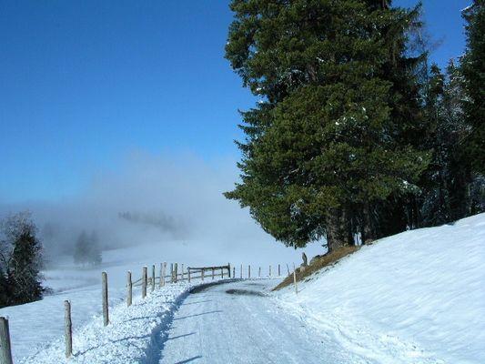 Douglas Kiefer im Winter auf dem Zugerberg