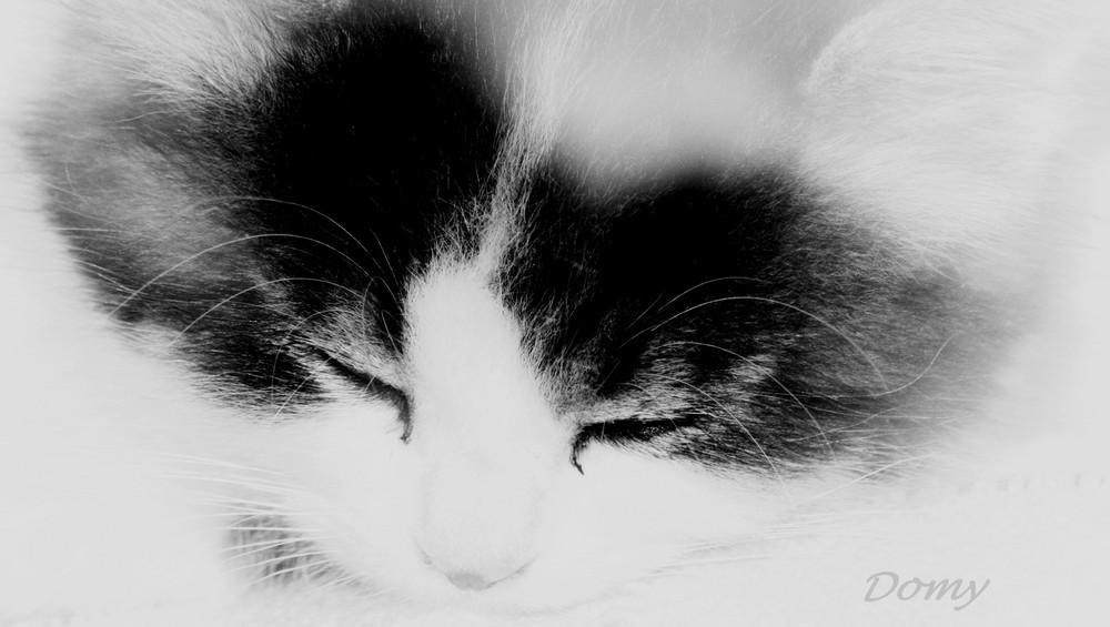 Doux sommeil